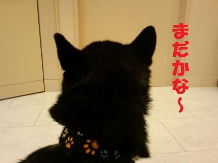 blog4735.jpg
