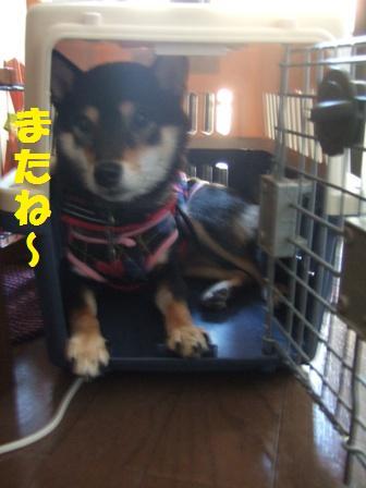 blog4840.jpg
