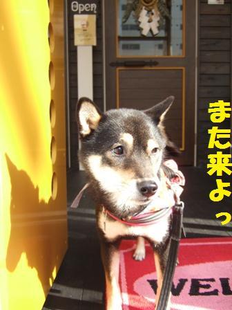 blog4877.jpg