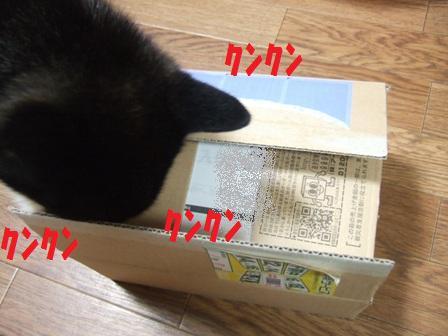 blog4889.jpg