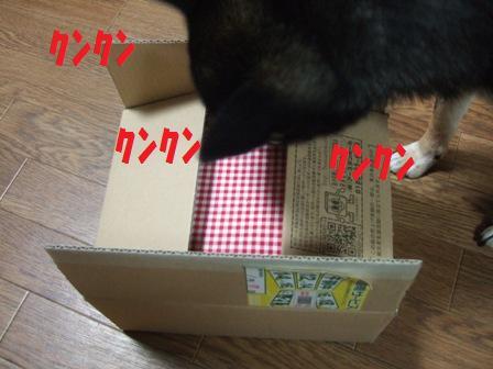 blog4890.jpg