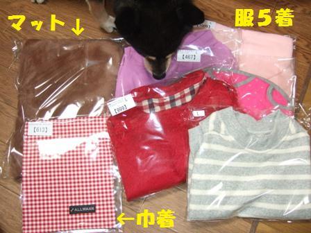 blog4892.jpg