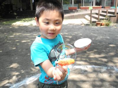 DSCN0107_convert_20120628201108.jpg
