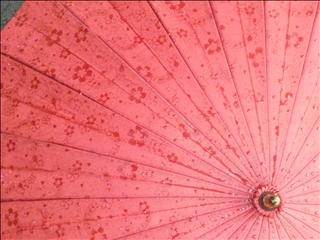 2012-5-22傘