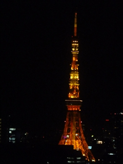 2012-11-21東京 (4)