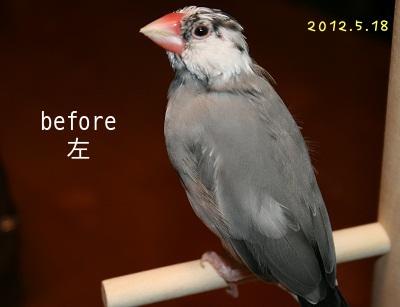 20120518_2670.jpg
