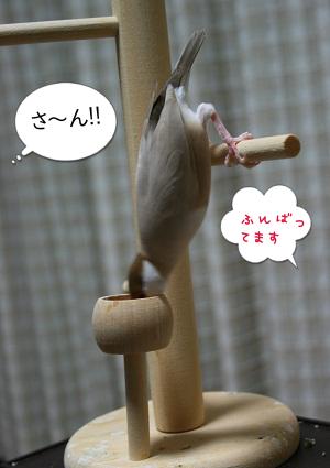 20120818_2768.jpg