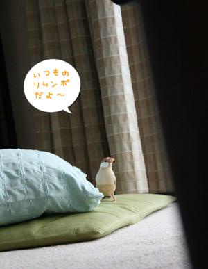 20130821_3897.jpg
