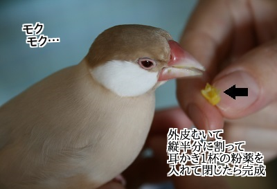 IMG_20130622_2177.jpg