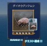 GiantIsopod.jpg