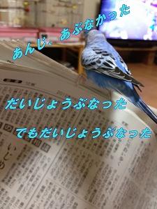 s-IMG_1892.jpg