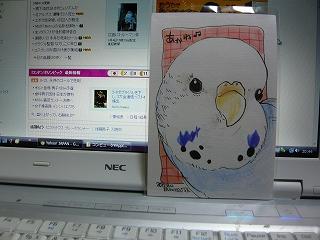 s-P1070936.jpg