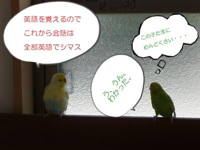 s-P1080550.jpg