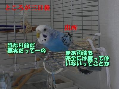 s-P1090521.jpg