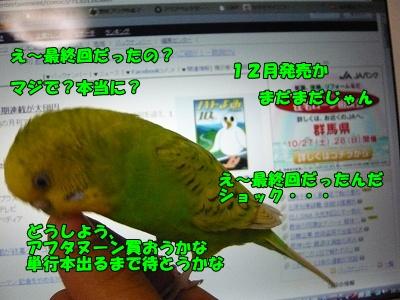 s-P1100434.jpg