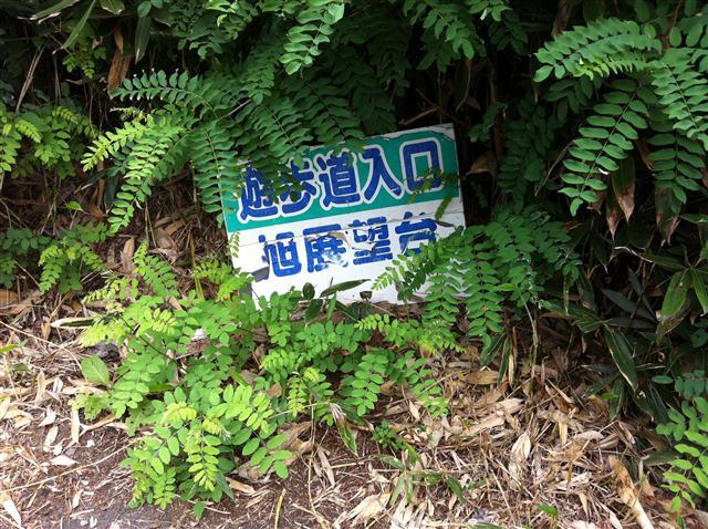 2012-09-06T13-44-34_R.jpg