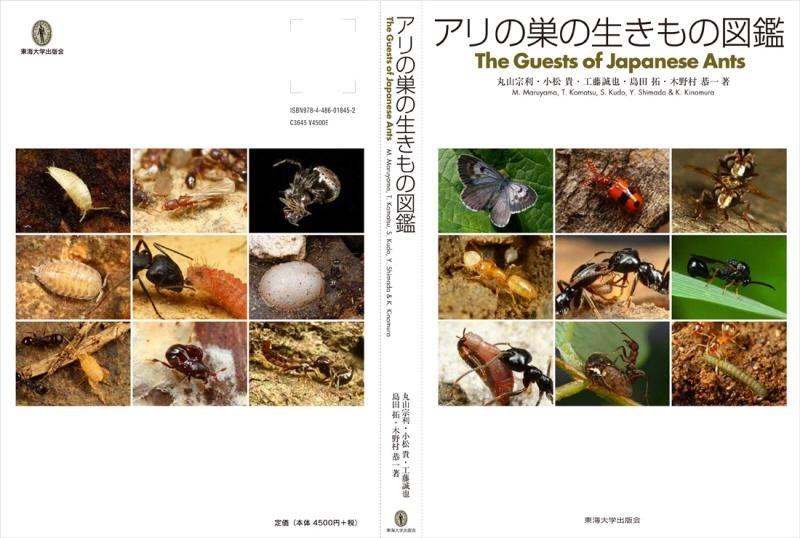 Arinosu_covers.jpg
