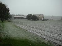 秋まき小麦もびっくり!