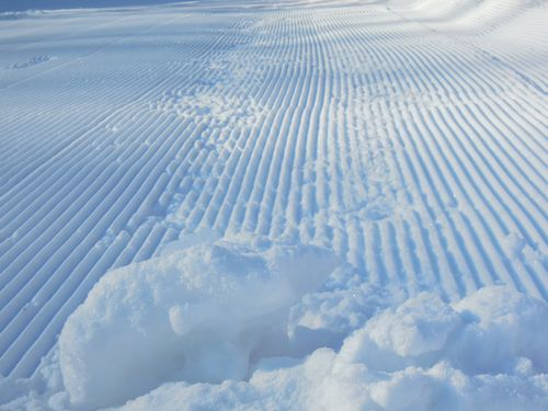 雪に五線譜