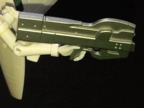 FJ310307.jpg