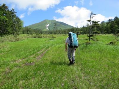 原始ヶ原から見る富良野岳