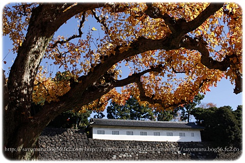 sayomaru11-600.jpg