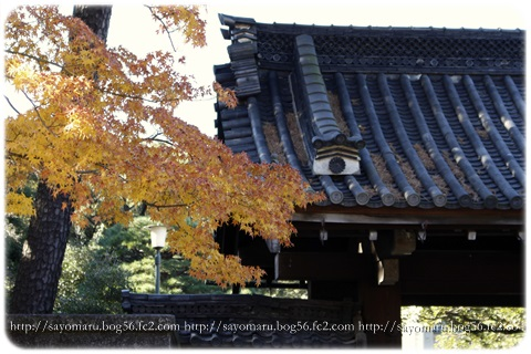 sayomaru11-601.jpg