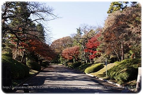 sayomaru11-603.jpg