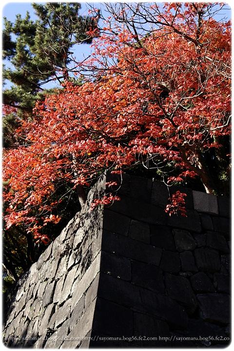 sayomaru11-620.jpg