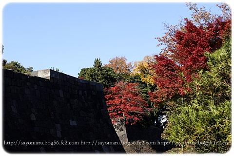 sayomaru11-630.jpg