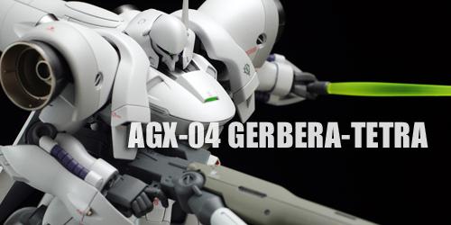 hguc_gerbera_f029.jpg