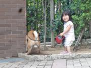DSC04648_convert_20120903173409.jpg