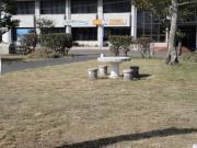 DSC04835_convert_20120926155359.jpg