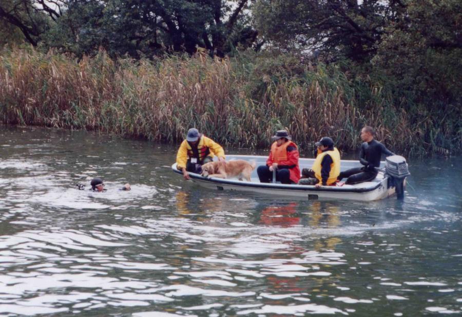 12年前の救助犬ウォーターサーチTC(2)