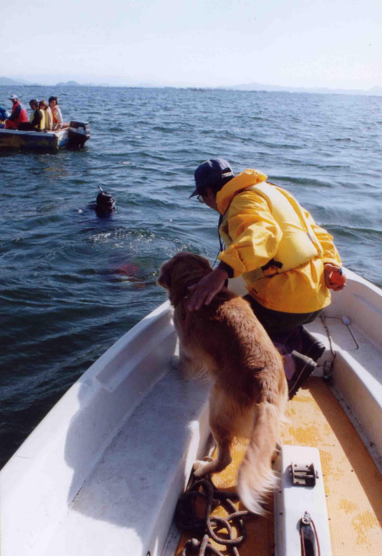 12年前の救助犬ウォーターサーチTC(4)