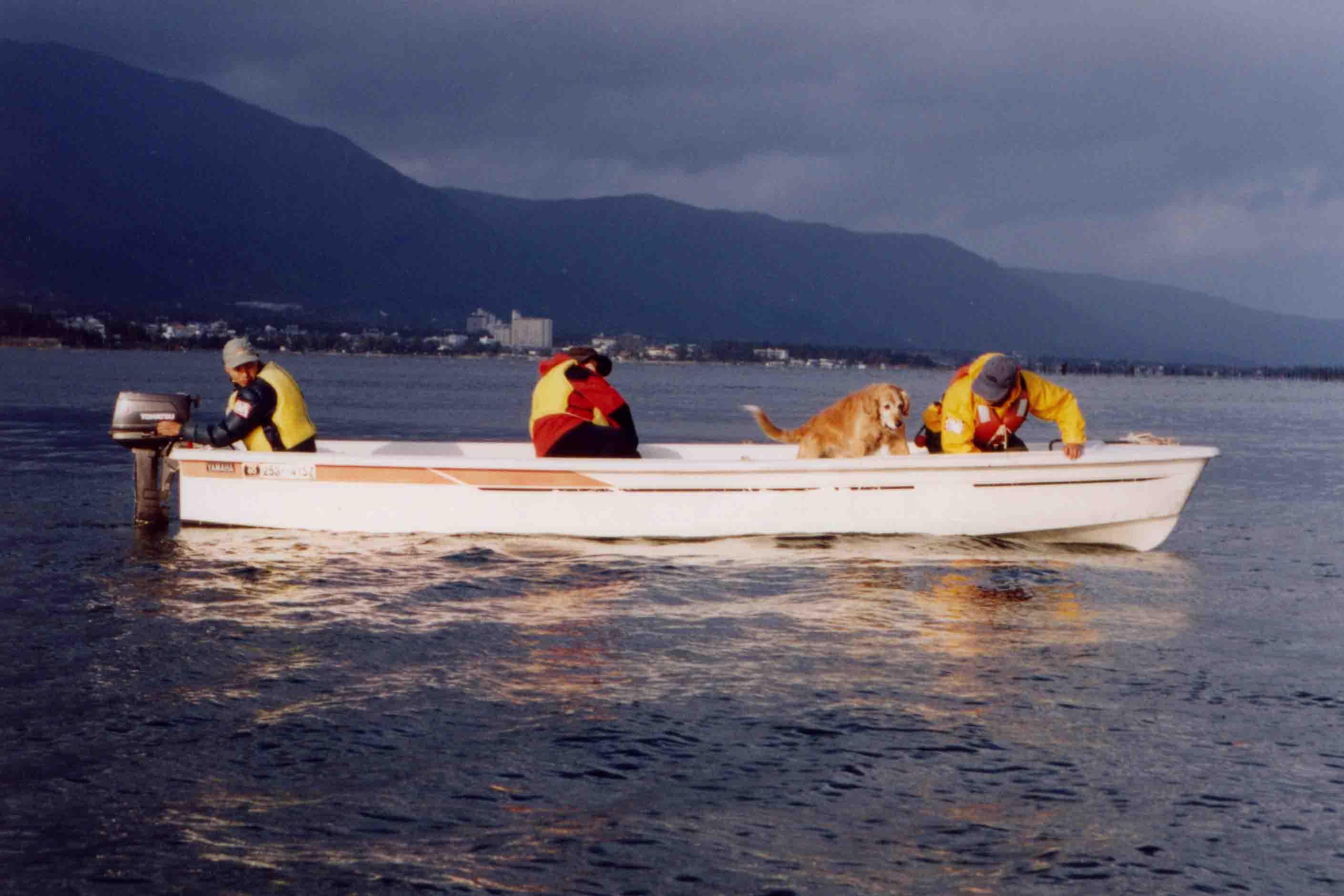 12年前の救助犬ウォーターサーチTC(3)