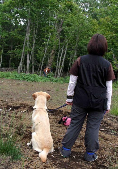 0624 待つ犬と人 IMG_1145