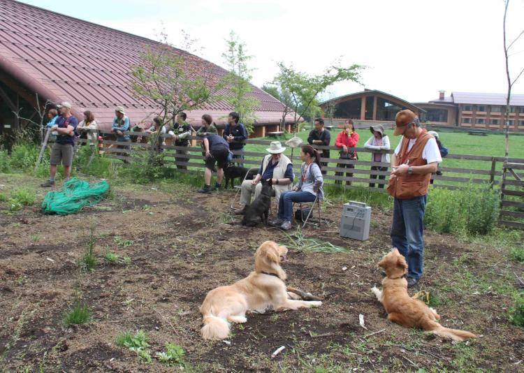 0624 待つ犬と人 IMG_1150