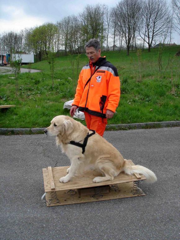 スイス・ベルン郊外の訓練施設(13)