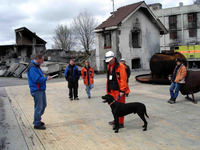 スイス救助犬試験模様(6)