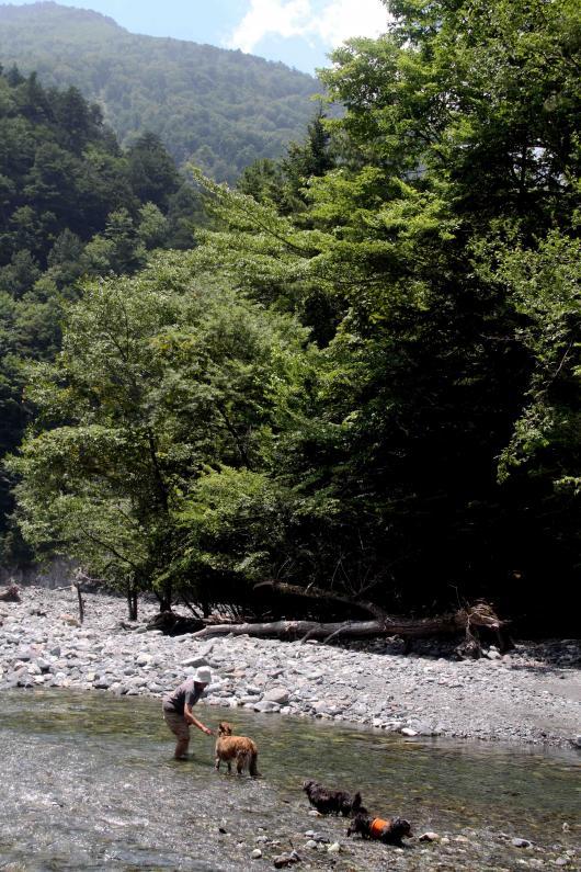 三峰川 201207(4)