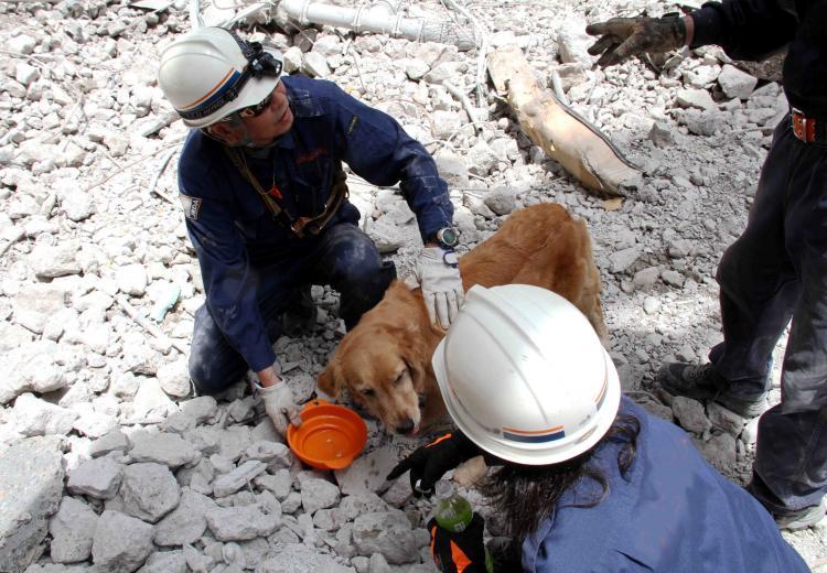 解体瓦礫で訓練(7)