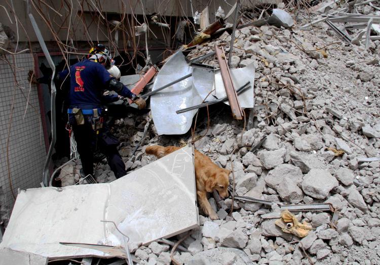 解体瓦礫で訓練(9)