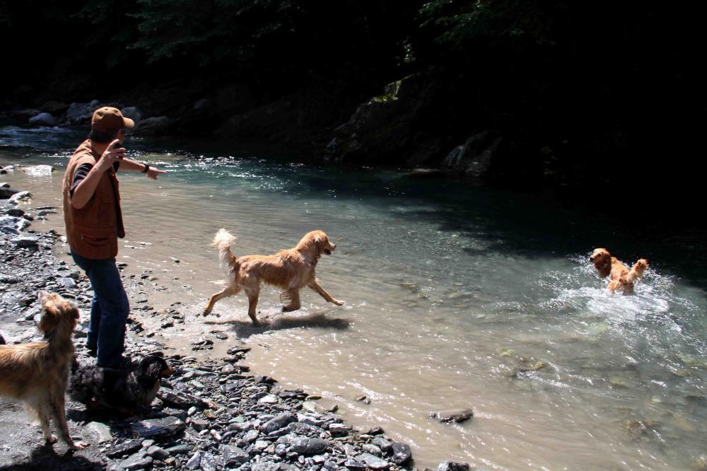 三峰川ですよ 0728(5)
