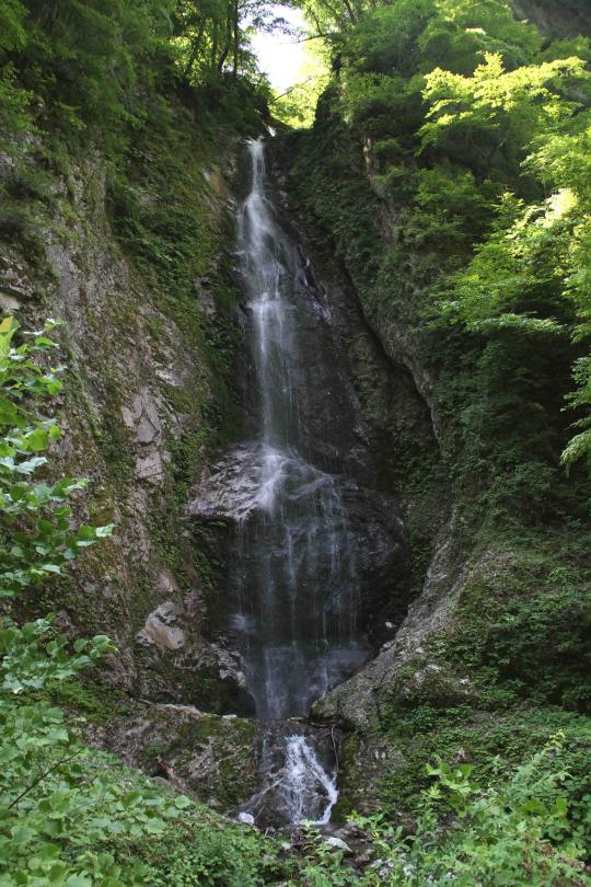 三峰川ですよ 0728(14)