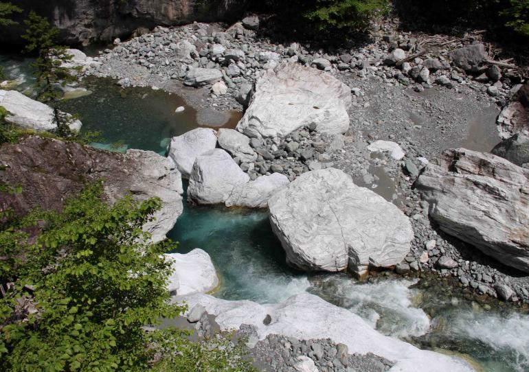 三峰川ですよ 0728(15)