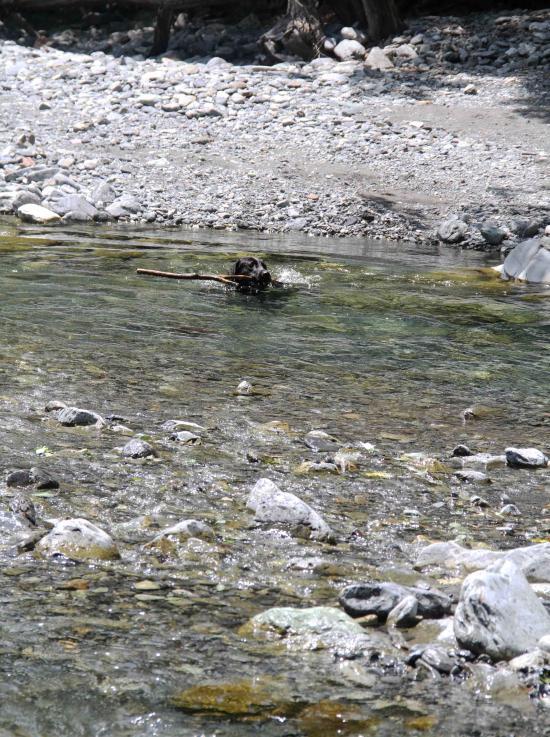 三峰川ですよ 0728(37)-1