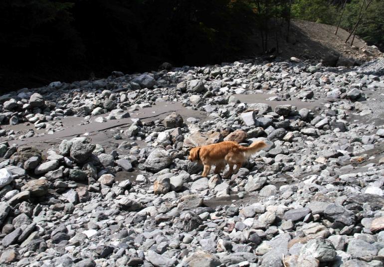 三峰川ですよ 0728(捜索Ⅳ)-2
