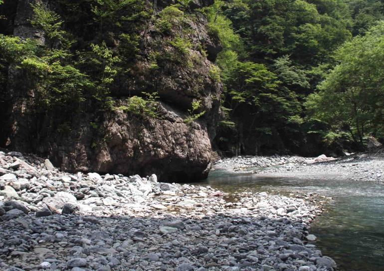 三峰川ですよ 0729 捜索(1)
