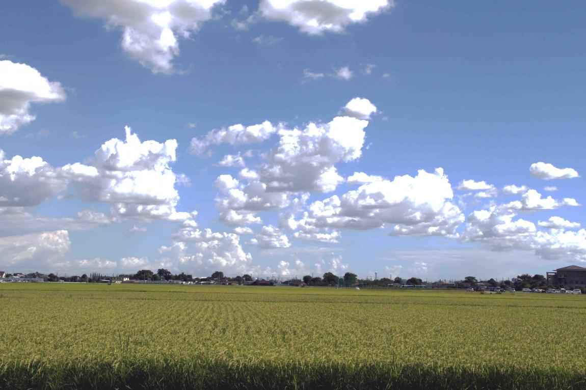 2012年8月19日の空(1)